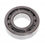 PINION NOSE BEARING